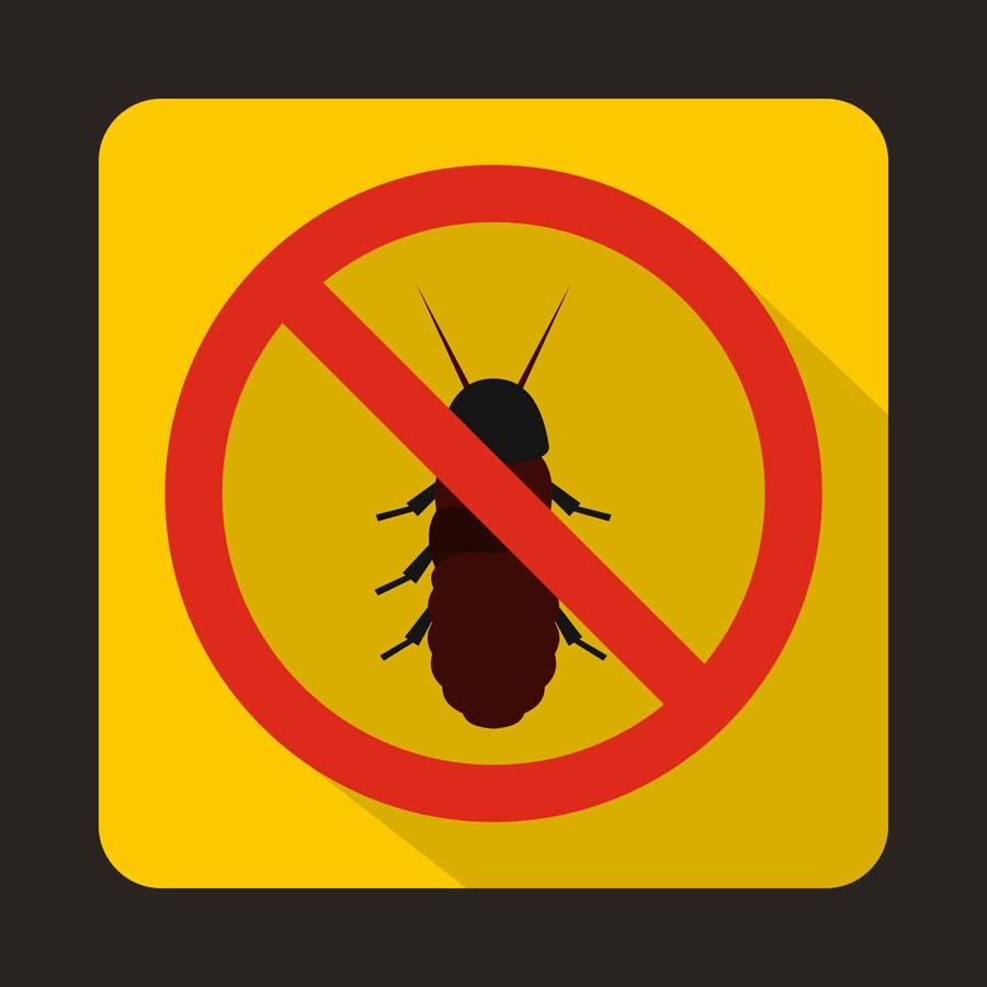 Avant de vendre votre villa bordeaux rive gauche faites faire un diagnostic termites grange - Grange delmas immo bordeaux ...